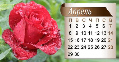 1 июля праздники в россии день ветеранов боевых действий